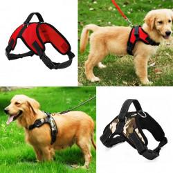 Arnés Collar de alta calidad para mascotas